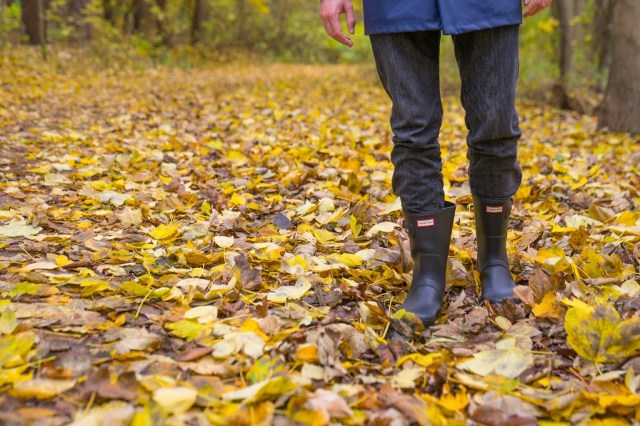 Hunter Short Wald Herbst