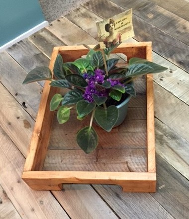 Pallet Tray With Plant