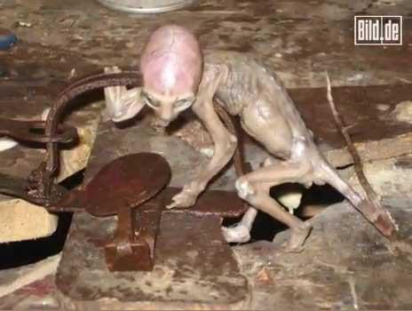تلاش موجود فضایی برای خارج كردن دستش از قلاب تله موش www.hashem.mihanblog.com
