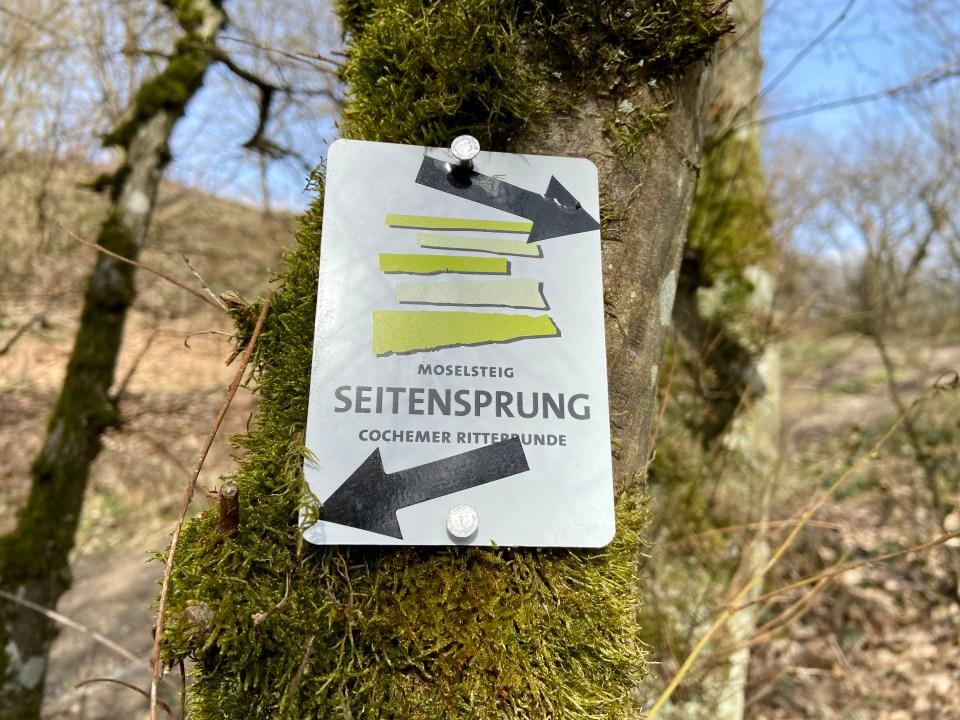 Moselsteig Seitensprung Cochemer Ritterrunde