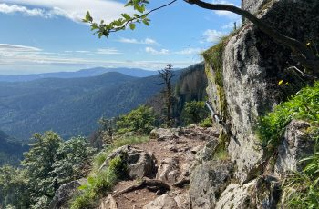Wandern in den Vogesen: Felsenweg - Lac de Schiessrothried - Höhenkamm