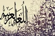 أمين عام المجلس الدولي للغة العربية: اللغة العربية تمر بأزمة