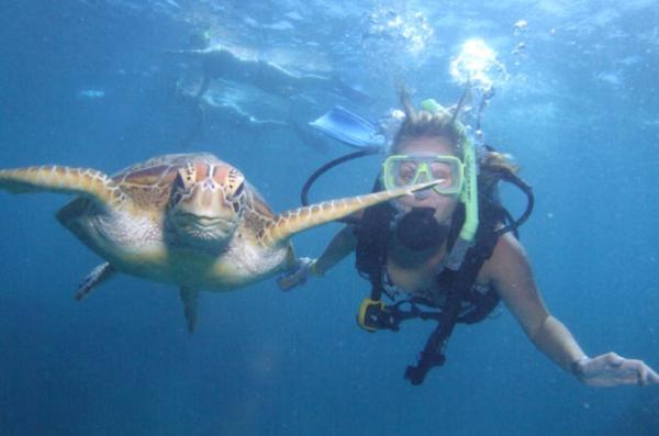 Great Barrier Reef | hashtagveganswag