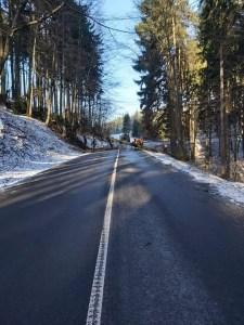 Asistence pri kácení stromu