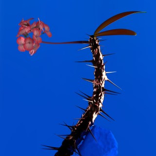 """News Added Feb 11, 2017 The prolific Australian EDM producer Flume has announced a new EP. It is the second installment of a set of EPs that contain material that didn't make Flume's 2016 album """"Skin"""". The first EP came out back in 2016. Flume has shared 4 snippets of the EP songs as well. […]"""