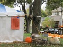 Spider Invasion! (at a local park -- Pumpkin Festival tent)