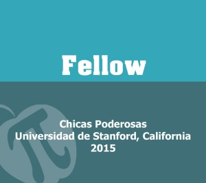 STANFORD FELLOW