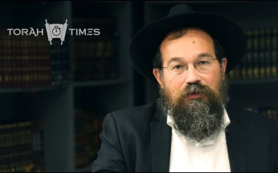 Torah Times : La Paracha de Ki Tétsé – La positive attitude par le Rav Yossef Katan