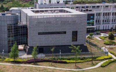 """Selon Fox News, le """"patient zéro"""" à l'origine de la pandémie pourrait être un employé de laboratoire P4 de Wuhan"""