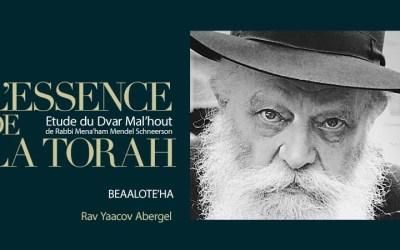 Texte et Audio : Etude du Dvar Mal'hout – Paracha Béalote'ha , par le Rav Yaacov Abergel