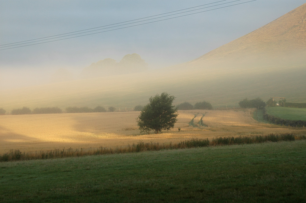 Minto Hill in the Mist. Photo by Ron Hastings
