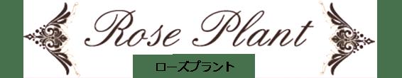 ローズ専門店:ローズプラント