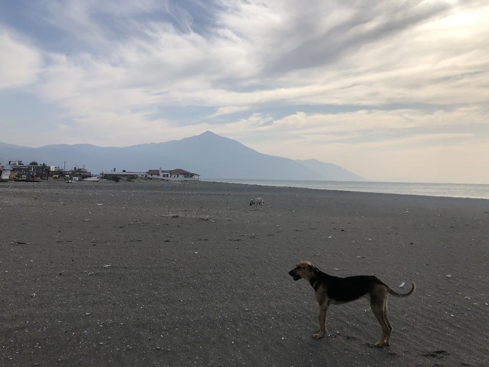 En uzun sahil sokağa çıkma yasağında sessizliğe büründü