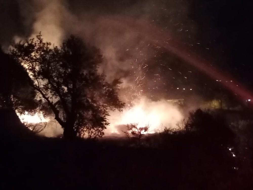 Samandağ'da zeytinlik yangını