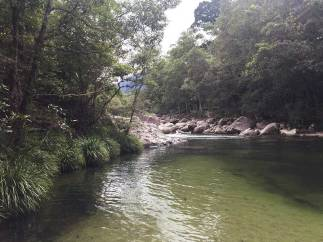 Beauty of the Mossman Gorge