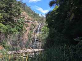 Waterfall Gully Track - Waterfall