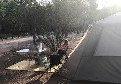 Wilpena Pound Campsite