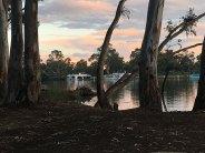 sunset-murray-mildura