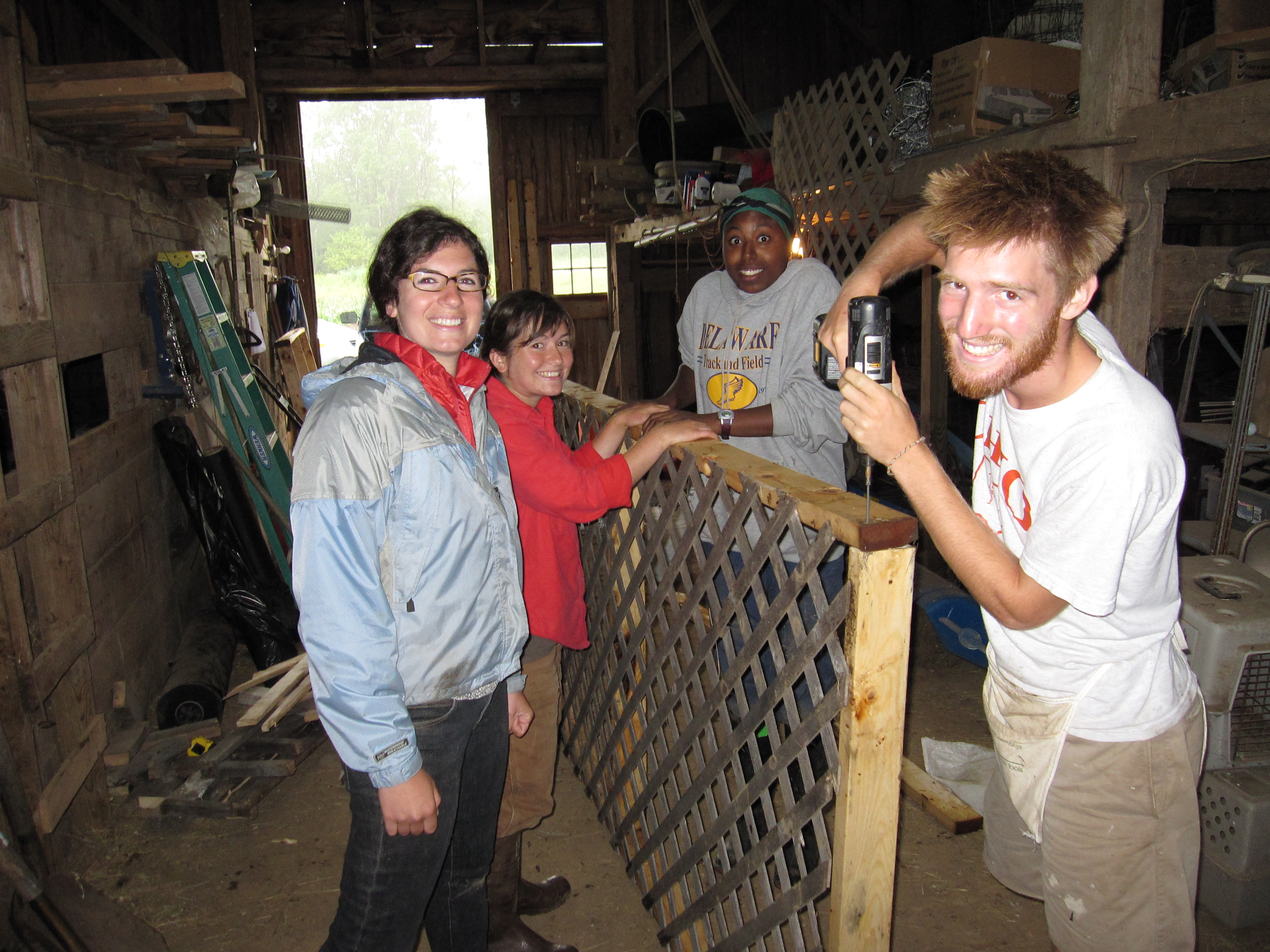 Rachel, Angelica, Minna & Jordan, honing their fine finish carpentry skills by building garlic and onion drying racks in the barn on a rainy Friday morning.