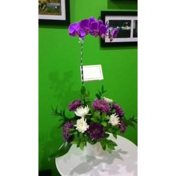 Anggrek Bulan- Hatiku Florist Jakarta