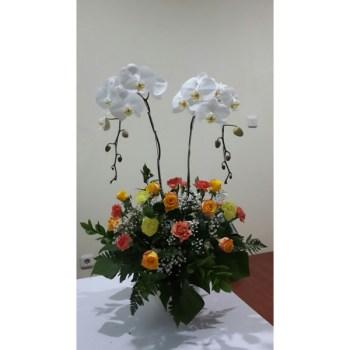 Carmela 1 - Hatiku Florist Jakarta