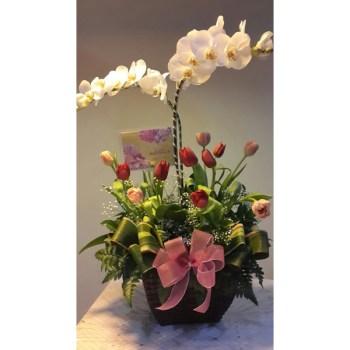 Carmela 4 - Hatiku Florist Jakarta