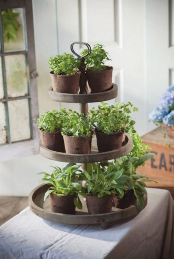 Unique Planter Ideas