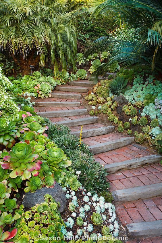 30+ Creative Pathway & Walkway Ideas For Your Garden ... on Backyard Walkway Ideas id=47369