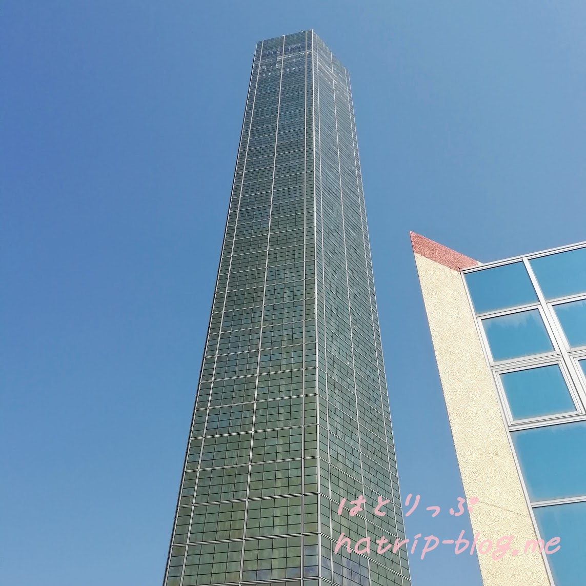 香川 宇多津 プレイパークゴールドタワー