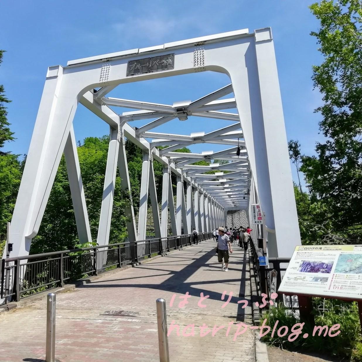 北海道 美瑛町 白ひげの滝 ブルーリバー橋