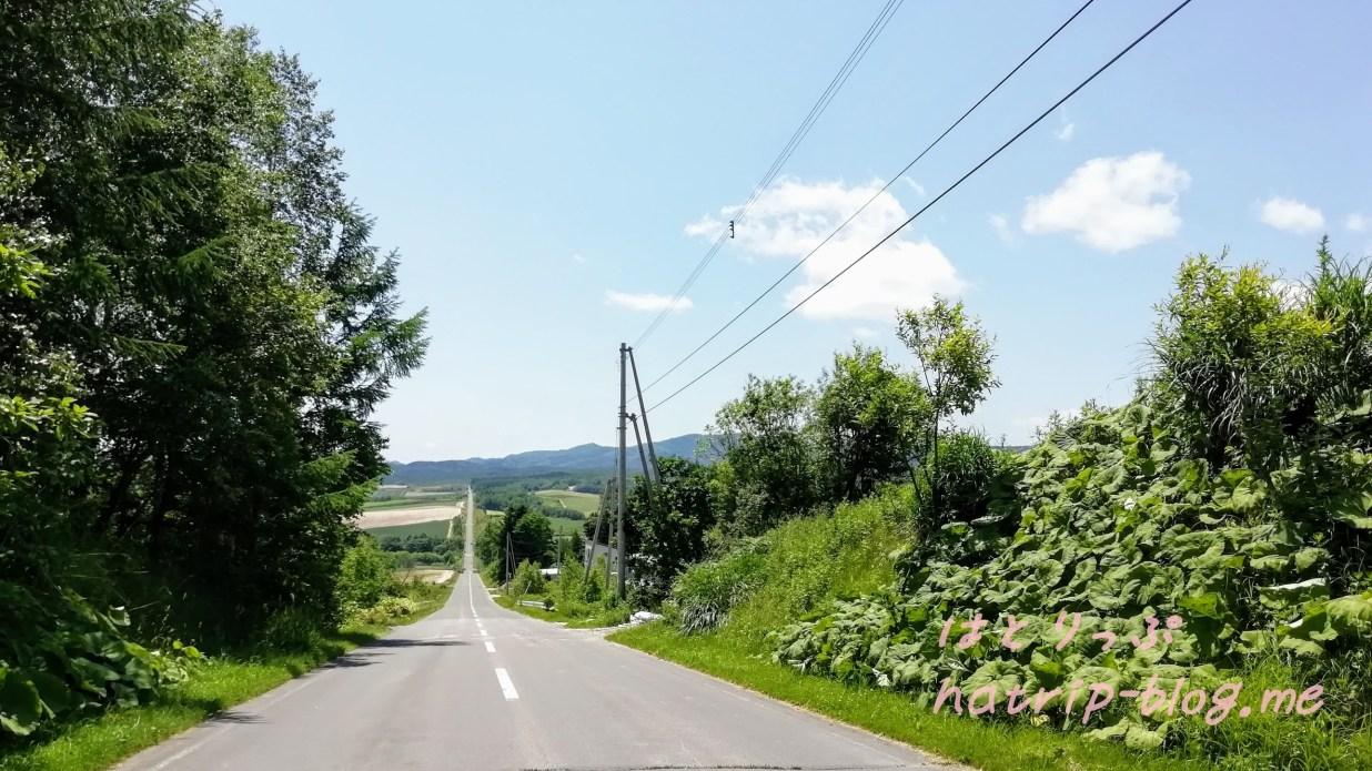 北海道 上富良野町 ジェットコースターの路