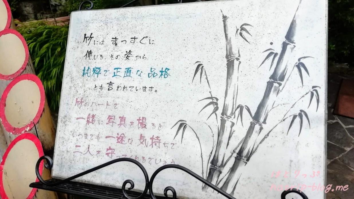 山梨県甲府市 昇仙峡 仙娥滝 水晶街道 竹のハート