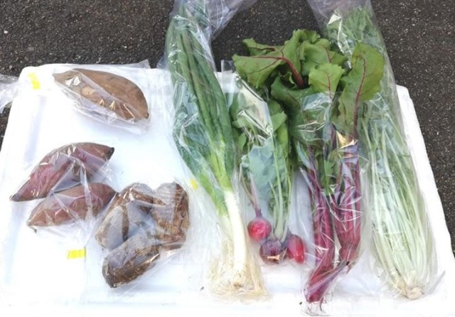 固定種自然栽培野菜販売します