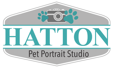 Hatton Pet Portrait Studio