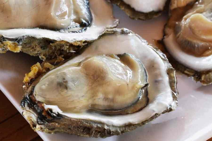 九州産 糸島の牡蠣