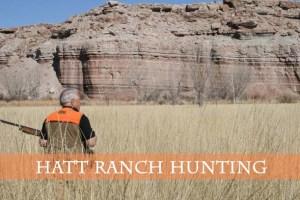 Hatt Ranch Hunting