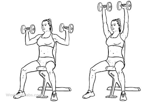 Dumbbell_Shoulder_Press_F_WorkoutLabs