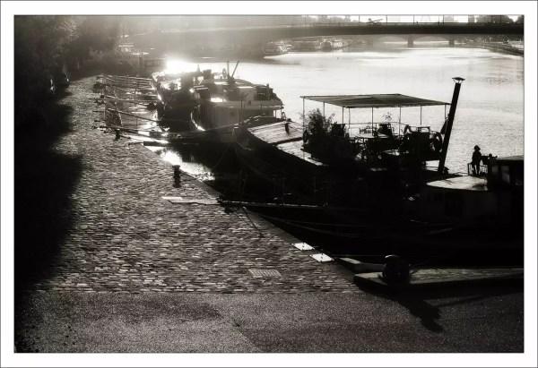 La Seine est un lieu de vie dense et varié