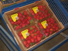 Salinas Valley Produce Shipments not Stellar, But Still Beats Most Areas