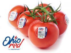 TomatoesNatureFresh
