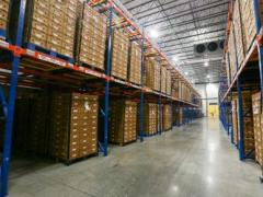 Steady Progress at Index Fresh Pharr Facility Since Opening