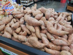 Amount of NC Sweet Potato Shipments this Season Still a Big Question