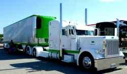 California Avocado Shipments May Crash 48% this Season; Imported Avocados Increase