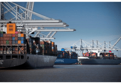 Routes, Facilities for Chilled Produce are Added at Port of Savannah