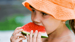 Watermelons are Increasing with Foodservice Menus