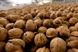 Power of 3 Campaign Touts California Walnuts Nutrition