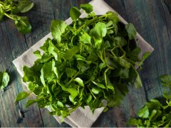 Watercress, the CDC's Most Recommended Powerhouse Veggie, Boosts Immunity