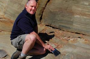 Dinosaur footprints in South Island revealed