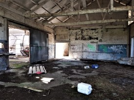 Abandoned Dairy Factory - Ruawai