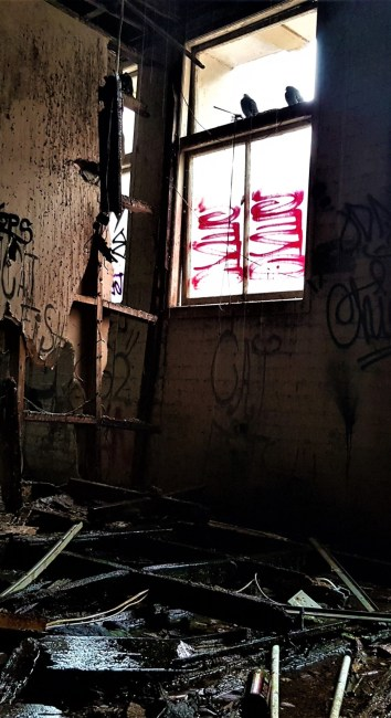The end is nigh – Inner City Building